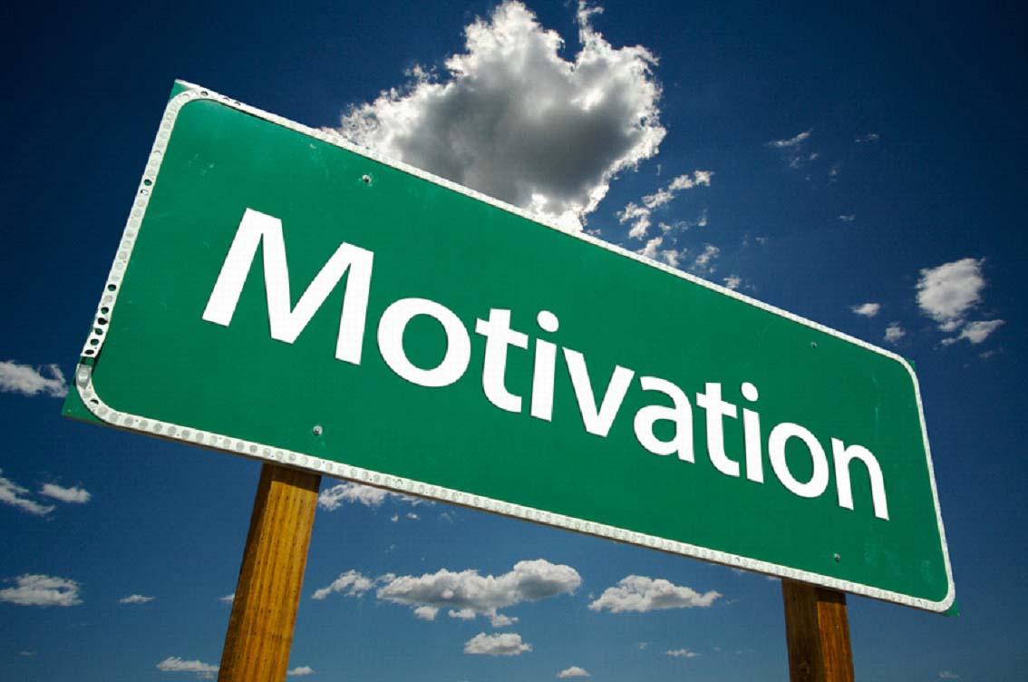 motivation i organisationer datingsider i danmark
